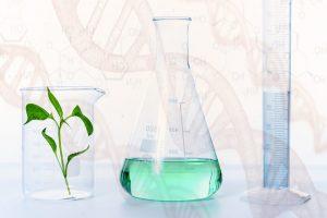 Naturopathic Medicine research
